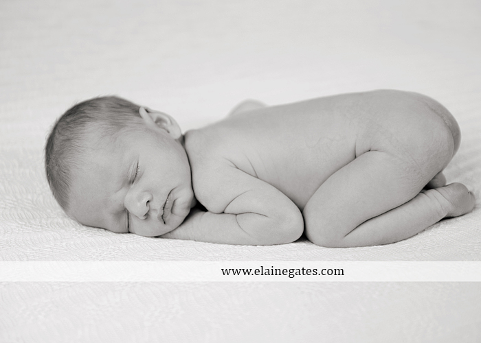Central Pennsylvania Newborn Photographer {Itty Bitty Newborn...}