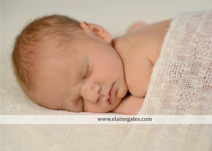 Central Pennsylvania Newborn Photographer {Itty Bitty Newborn...1}