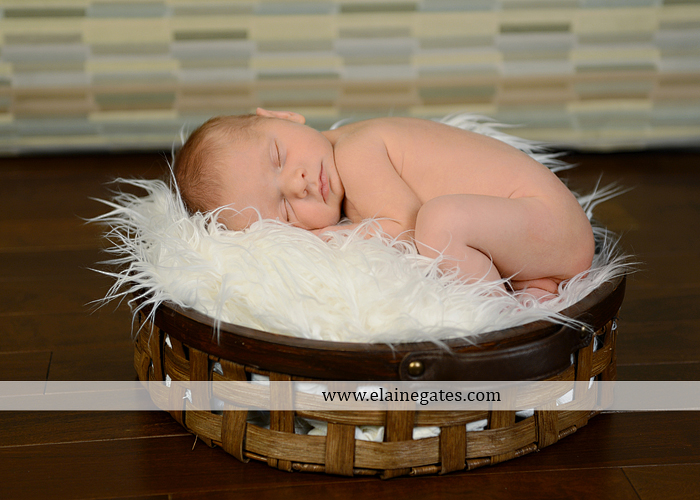 Central Pennsylvania Newborn Photographer {Itty Bitty Newborn...3}
