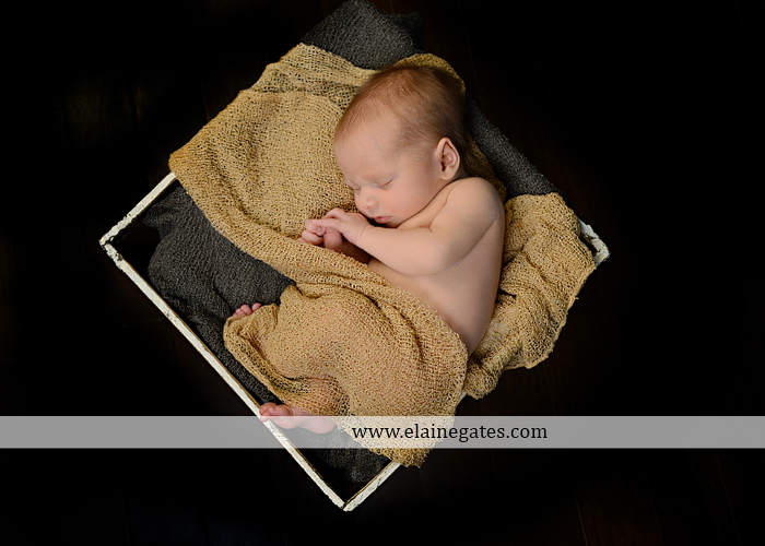 Central Pennsylvania Newborn Photographer {Itty Bitty Newborn...6}