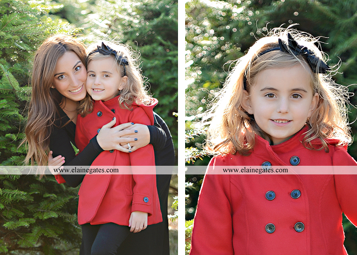 Big Sister Announcement Photo shoot central pa photographer christmas ar 3