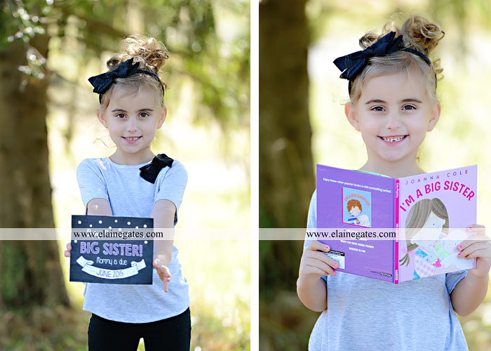 Big Sister Announcement Photo shoot central pa photographer christmas ar 5