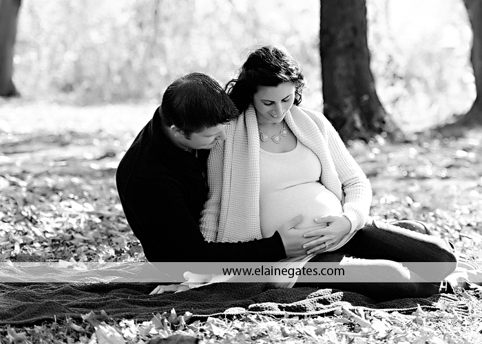 fort hunter harrisburg pa maternity photographer ab 4