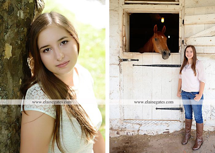 central pa senior portrait photographer bench tree flute music stream creek art sketch wildflowers stone stairs horse stable barn hw 6