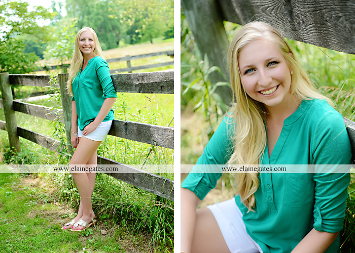 central pa senior portrait photographer brick wall swing wildflowers ballet stream creek fence hammock hf 3
