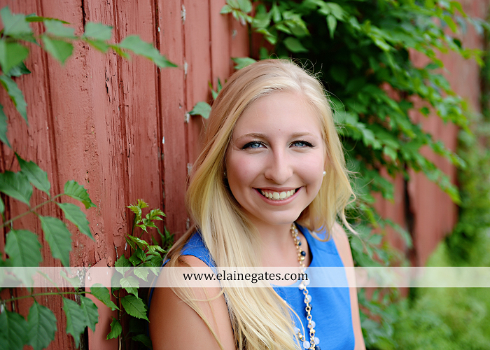 central pa senior portrait photographer brick wall swing wildflowers ballet stream creek fence hammock hf 5