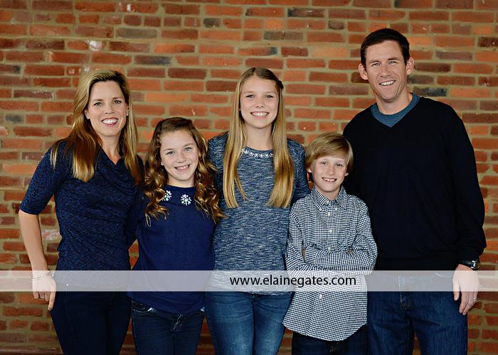 mechanicsburg pa indoor family photographer js 4