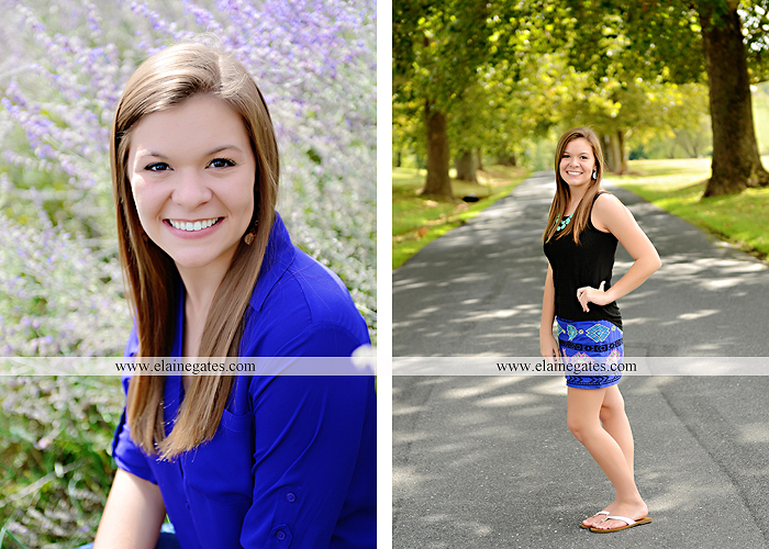 central pa senior portrait photographer tree wildflowers road brick stone wall swing water stream creek fence grass field lf 2