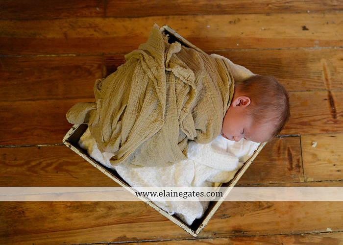 Mechanicsburg Central PA newborn portrait photographer baby newborn sleeping blanket basket hardwood floor brick wall dog mother father bed hold hat mu 2