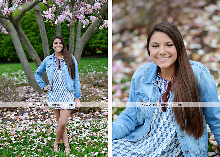 Mechanicsburg Central PA senior portrait photographer outdoor trees grass field covered bridge road fence messiah college hammock ji 8