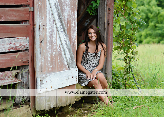 Mechanicsburg Central PA senior portrait photographer outdoor field trees water mom mother brother fence shore grass road wood door converse stone wall wildflowers hammock barn ar 20