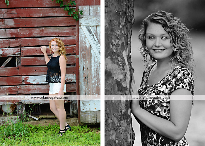 Mechanicsburg Central PA senior portrait photographer outdoor girl female hammock tree grass leaves stone wall wood wall rustic barn door field wildflowers road lb 06
