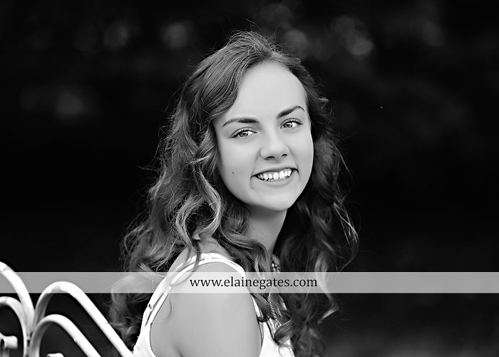 Mechanicsburg Central PA senior portrait photographer outdoor tree water stream creek fence road sidewalk brick stone wall grass wildflowers field hammock chair ab 07