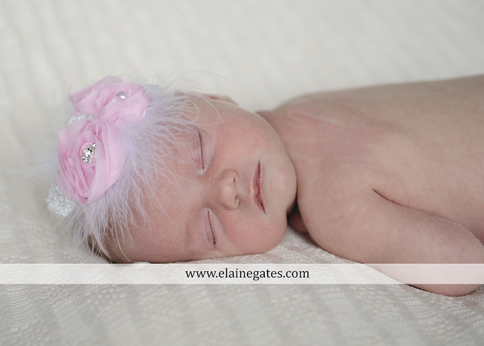 Mechanicsburg Central PA newborn baby portrait photographer girl knit hat bow feathers wings pink blanket mother father field basket sleeping indoor outdoor mr 06