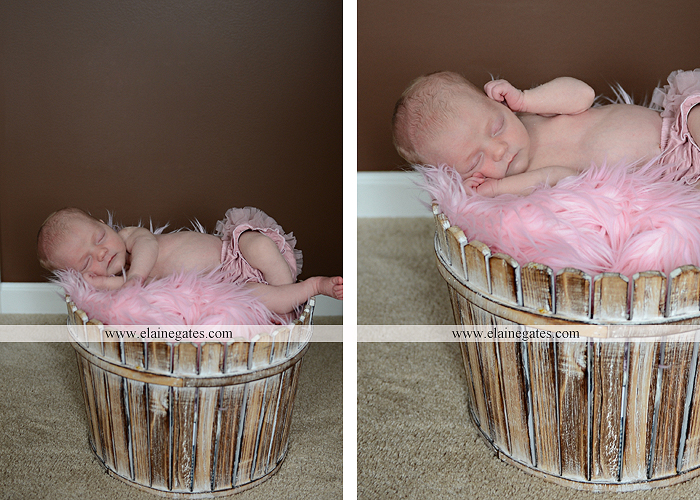 Mechanicsburg Central PA newborn baby portrait photographer girl knit hat bow feathers wings pink blanket mother father field basket sleeping indoor outdoor mr 13