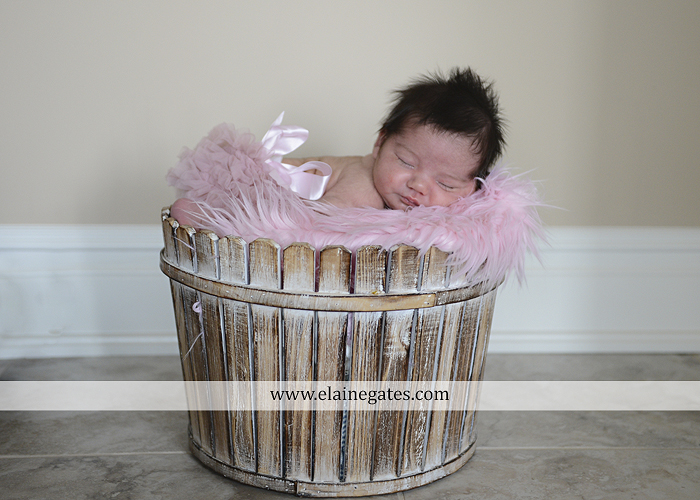Mechanicsburg Central PA newborn baby portrait photographer girl sleeping basket pink brother family feet headband blanket white sf 03