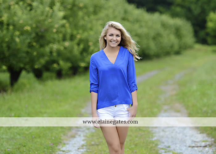 Mechanicsburg Central PA senior portrait photographer outdoor girl female fence field wood wall stone wall barn door wildflowers hammock bench tree swing formal ma 03