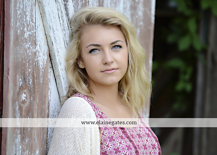 Mechanicsburg Central PA senior portrait photographer outdoor girl female fence field wood wall stone wall barn door wildflowers hammock bench tree swing formal ma 13