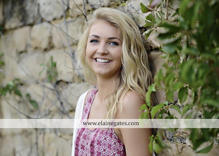 Mechanicsburg Central PA senior portrait photographer outdoor girl female fence field wood wall stone wall barn door wildflowers hammock bench tree swing formal ma 17