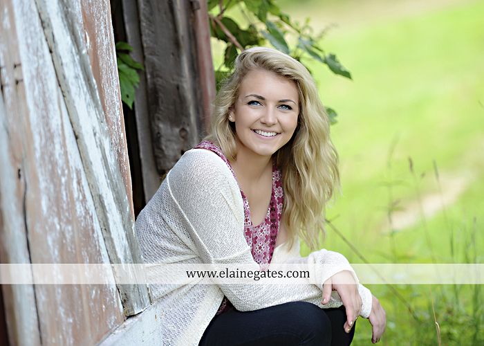Mechanicsburg Central PA senior portrait photographer outdoor girl female fence field wood wall stone wall barn door wildflowers hammock bench tree swing formal ma 18