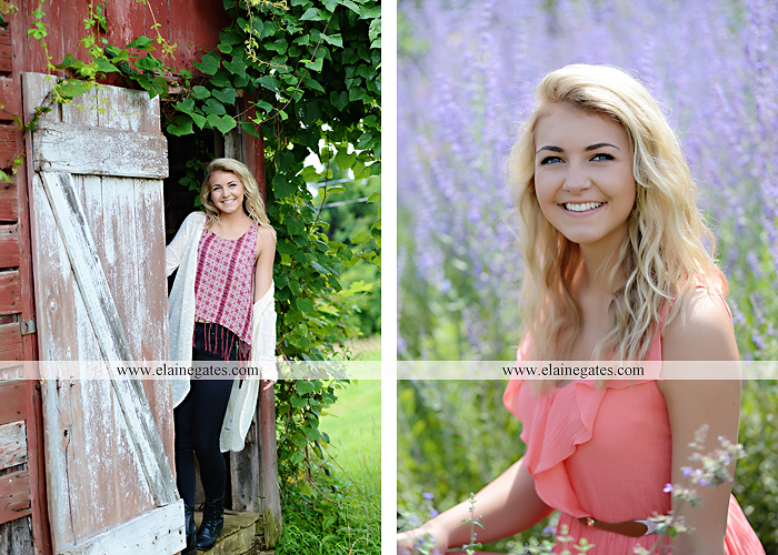 Mechanicsburg Central PA senior portrait photographer outdoor girl female fence field wood wall stone wall barn door wildflowers hammock bench tree swing formal ma 19