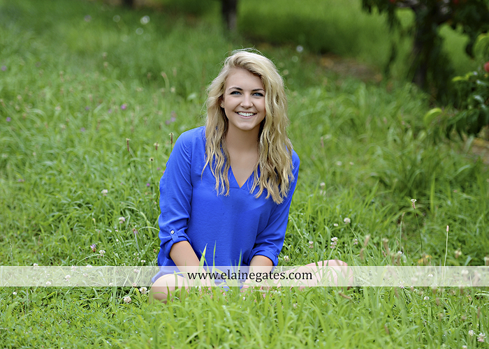 Mechanicsburg Central PA senior portrait photographer outdoor girl female fence field wood wall stone wall barn door wildflowers hammock bench tree swing formal ma 22