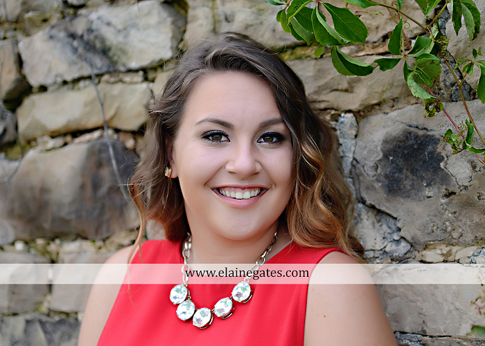 Mechanicsburg Central PA senior portrait photographer outdoor girl female field wildflowers stone wall wood wall formal trees grass water stream creek road sidewalk brick wall wooden swing 02
