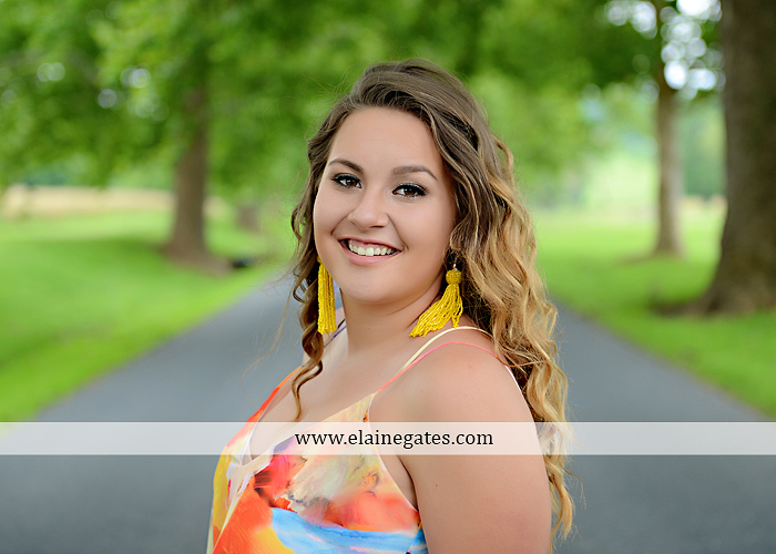 Mechanicsburg Central PA senior portrait photographer outdoor girl female field wildflowers stone wall wood wall formal trees grass water stream creek road sidewalk brick wall wooden swing 08