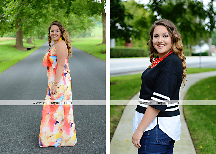 Mechanicsburg Central PA senior portrait photographer outdoor girl female field wildflowers stone wall wood wall formal trees grass water stream creek road sidewalk brick wall wooden swing 09