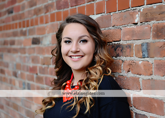 Mechanicsburg Central PA senior portrait photographer outdoor girl female field wildflowers stone wall wood wall formal trees grass water stream creek road sidewalk brick wall wooden swing 11