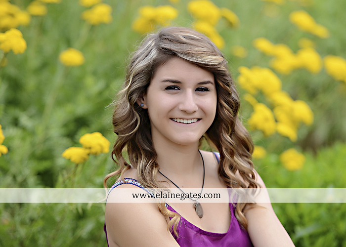Mechanicsburg Central PA senior portrait photographer outdoor girl female tree grass water creek stream fence field road wildflowers hammock bench dg 06