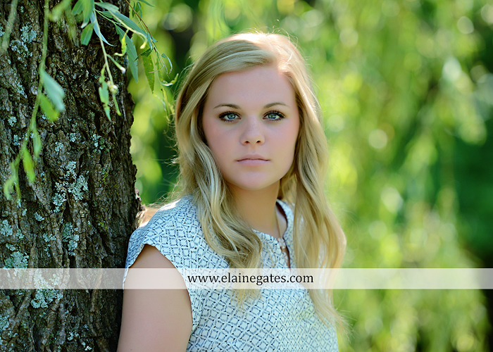 Mechanicsburg Central PA senior portrait photographer outdoor grass formal tree water stream creek fence field american flag usa ford pickup truck road brick wall stone wall wildflowers wooden swing 04