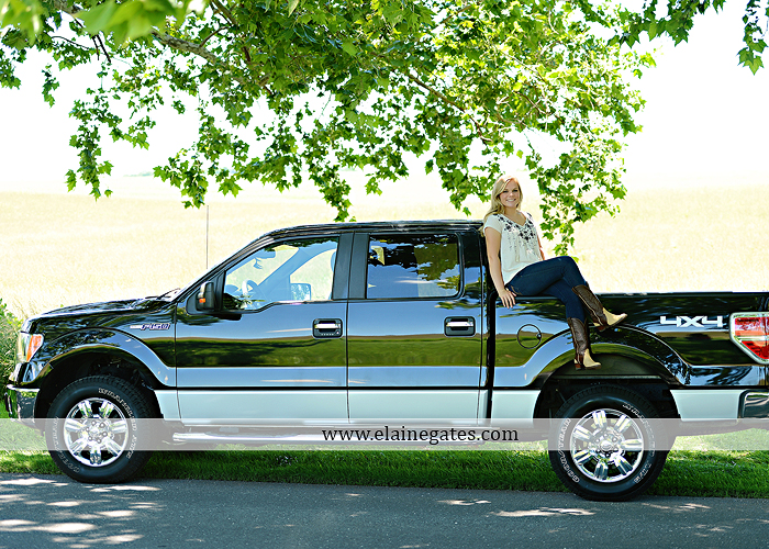 Mechanicsburg Central PA senior portrait photographer outdoor grass formal tree water stream creek fence field american flag usa ford pickup truck road brick wall stone wall wildflowers wooden swing 10
