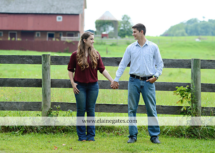 Mechanicsburg Central PA engagement portrait photographer outdoor fence trees field road water stream creek kiss barn farm holding hands nw 04