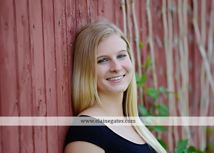Mechanicsburg Central PA senior portrait photographer outdoor tree bench grass brother dog hammock road field water stream creek american flag usa barn wildflowers tire weights jump rope nk 11