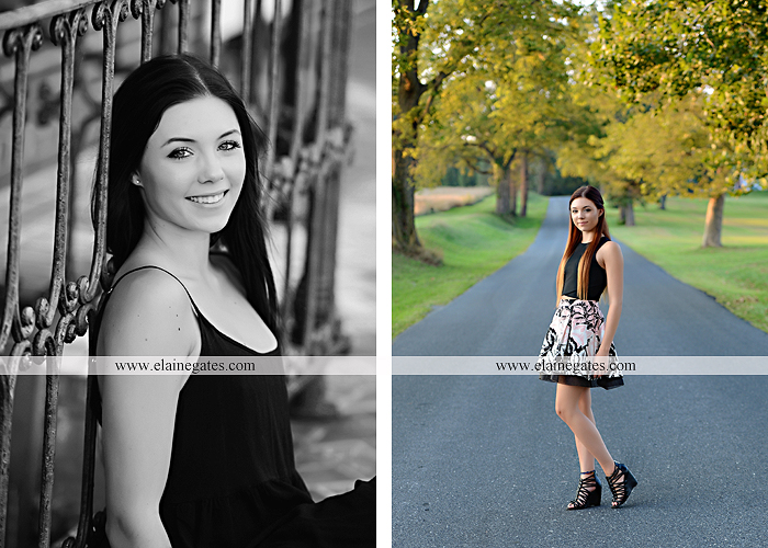 Mechanicsburg Central PA senior portrait photographer outdoor female girl grass bench hammock brick wall urban steps doorway road field fence water stream creek rock wildflowers cw 06