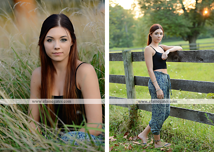 Mechanicsburg Central PA senior portrait photographer outdoor female girl grass bench hammock brick wall urban steps doorway road field fence water stream creek rock wildflowers cw 08