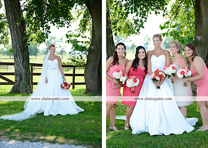 Lakeview Farms wedding photographer Dover pa tan pink Mixed-Up Productions Shearer's Florist Rock, Paper, Scissors J & D Bridals J. Crew Mountz 039