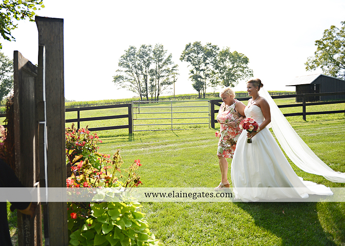 Lakeview Farms wedding photographer Dover pa tan pink Mixed-Up Productions Shearer's Florist Rock, Paper, Scissors J & D Bridals J. Crew Mountz 047