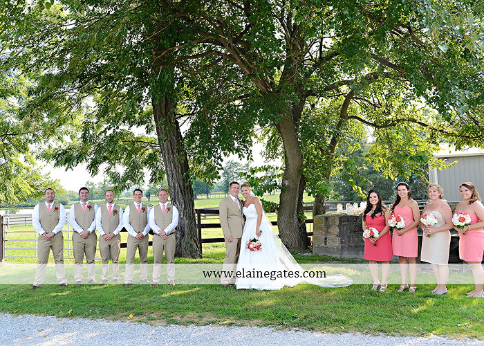 Lakeview Farms wedding photographer Dover pa tan pink Mixed-Up Productions Shearer's Florist Rock, Paper, Scissors J & D Bridals J. Crew Mountz 059