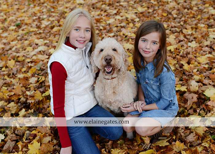 Mechanicsburg Central PA family portrait photographer outdoor girls daughters sisters dog husband wife mother father wood pile leaves trees eg 3