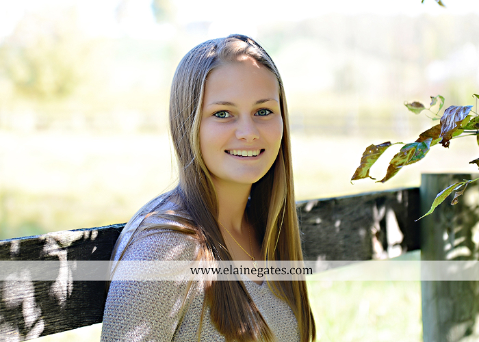 Mechanicsburg Central PA senior portrait photographer outdoor girl female road trees field water stream creek fall fence kg 5