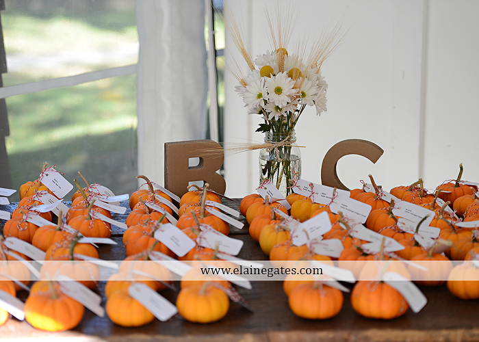 Historic Shady Lane wedding photographer manchester pa fun casual laid back premier catering sweetreats by wendi wegmans expressions by tanya modcloth zales 31