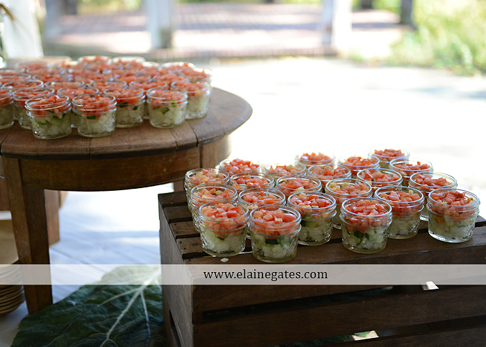 Historic Shady Lane wedding photographer manchester pa fun casual laid back premier catering sweetreats by wendi wegmans expressions by tanya modcloth zales 40