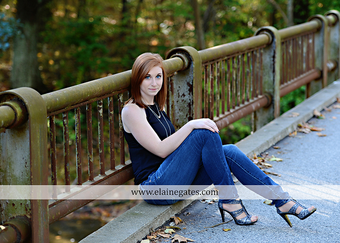Mechanicsburg Central PA senior portrait photographer outdoor girl female formal rustic bridge stone brick wall road trees covered bridge messiah college wooden beams water stream creek leaves zm 04
