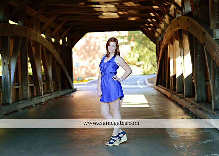 Mechanicsburg Central PA senior portrait photographer outdoor girl female formal rustic bridge stone brick wall road trees covered bridge messiah college wooden beams water stream creek leaves zm 10