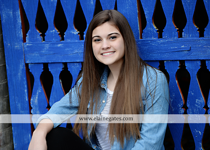 Mechanicsburg Central PA senior portrait photographer outdoor girl female Venue Chilton brick wall stone wall stone arch steps iron gate  red land high school RLHS k 5