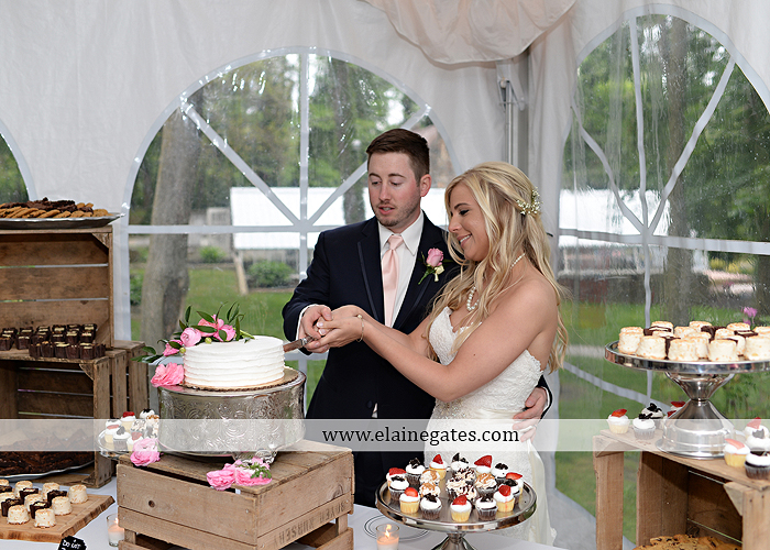 Historic Shady Lane wedding photographer manchester pa pink blue tasteful occasions royers jenny's full service salon taylored for you men's wearhouse mountz jewelers 72