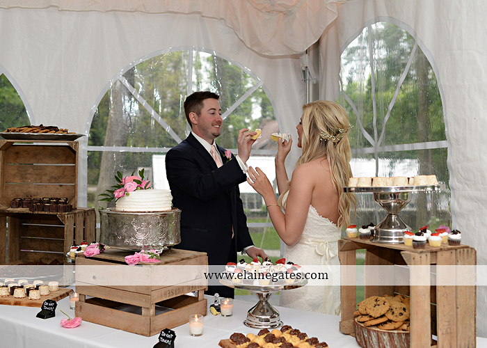 Historic Shady Lane wedding photographer manchester pa pink blue tasteful occasions royers jenny's full service salon taylored for you men's wearhouse mountz jewelers 73