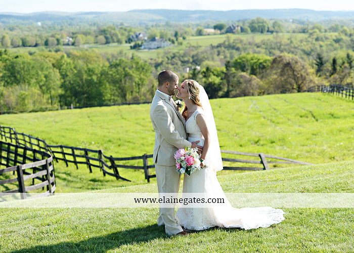 Lauxmont Farms wedding photographer Cobblestone Courtyard Wrightsville pa pink B&B Light and Sound Dickey's Aulestia David's Bridal Men's Wearhouse roman jewelers gordon's 41